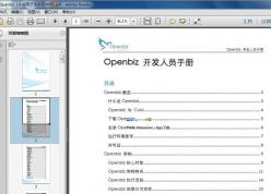 Openbiz 应用开发手册 v2.4 中英文